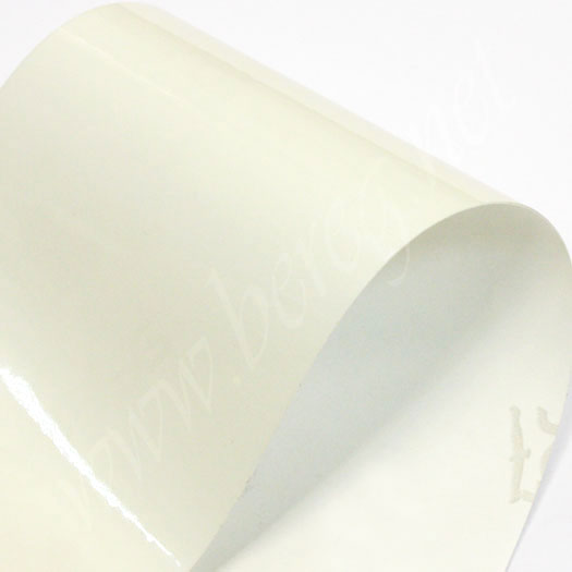 Adestor PVC Transparent